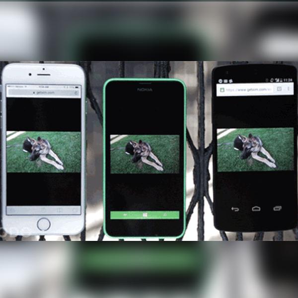 Microsoft,приложение,фотографии, Microsoft Xim – самый простой способ показать фотографии друзьям