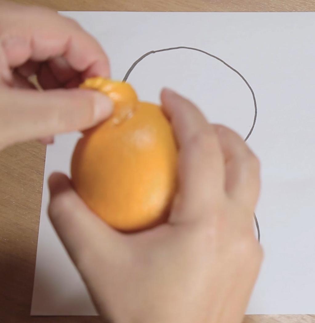 математика,наука, Гуманитарий объяснил математику на апельсинах